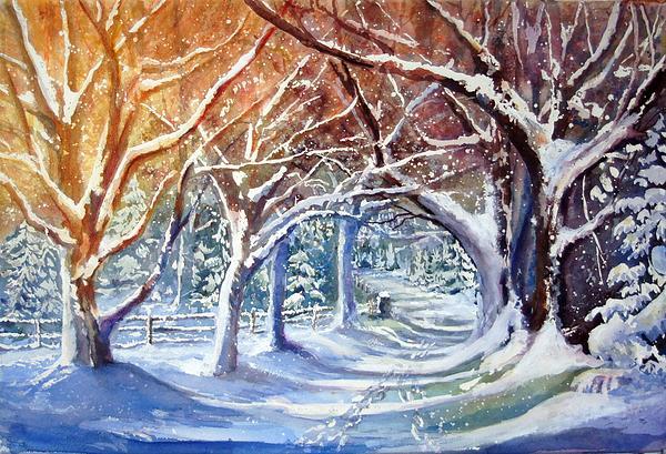 A Winter Path / Maria Balcells