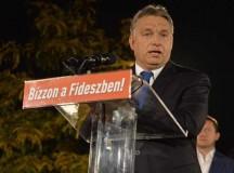Minden magyarok királya