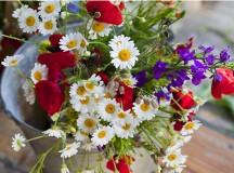 Magyarországon ma ünneplik az Anyák napján, Kanadában, illetve az USA-ban pedig jövő vasárnap.