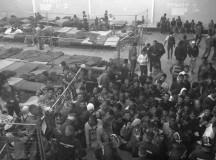 Menekültellátás by Orbanisztán updated