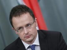 Magyarország, mint szerv