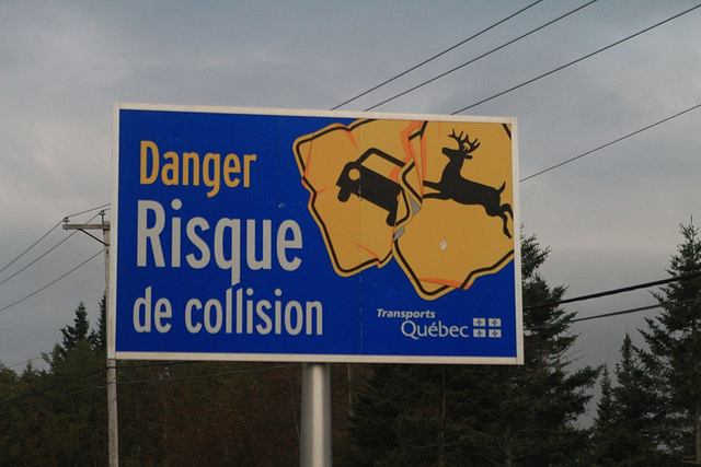 Az angol nyelv nem egy ragályos betegség — Végre kétnyelvűek lehetnek Québec közúti táblái
