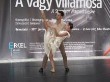 "Tennessee Williams ""A vágy villamosa"" című darabja Budapesten"