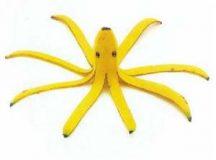 Államformája: banánköztársaság