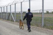 Begördült Magyarországra a migránskaraván